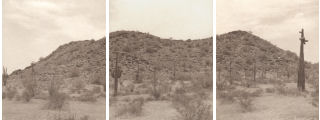Sonoran Desert National Monument Landscape-Click for a larger image